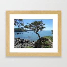 Bowman Bay Framed Art Print