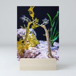 Sea-horsing around Mini Art Print