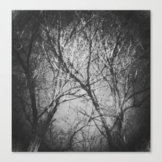 Trees in the dark Canvas Print