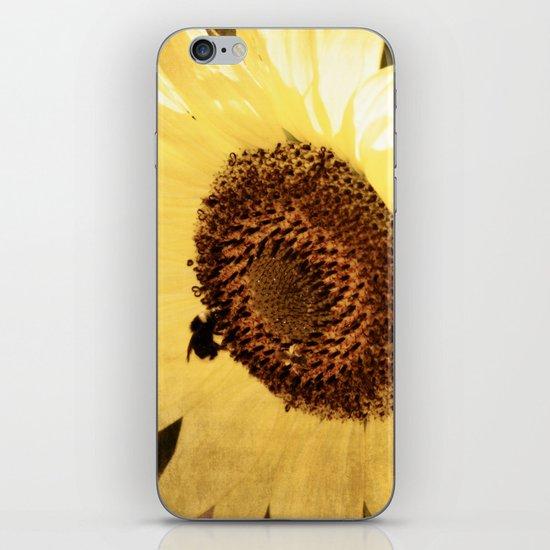 Simple Sunflower iPhone & iPod Skin