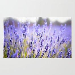 Lavenders Rug