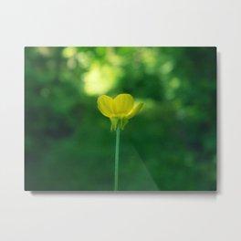 flowers. Metal Print