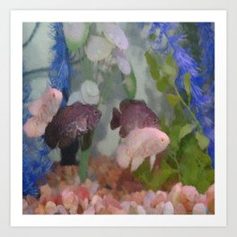 Four Oscars swimming in an aquarium (Painted) Art Print