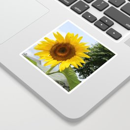 une seule fleur Sticker