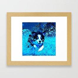 border collie jumping in water vector art crisp winter Framed Art Print