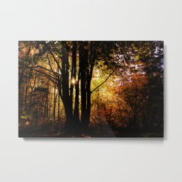 shadows into light Metal Print