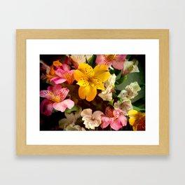 Lily of the Incas Bouquet Framed Art Print
