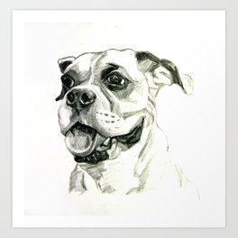 Smiling Boxer Boy Oscar Art Print