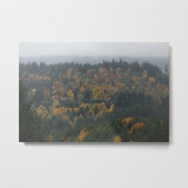 Fog in the great North West Metal Print