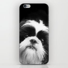 Shih Tzu Dog iPhone Skin