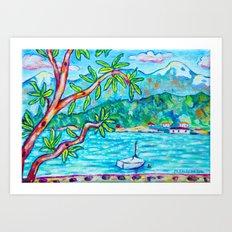 A Denman View Art Print