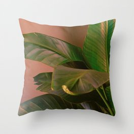 Passionz Throw Pillow