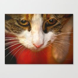You have my undivided attention Canvas Print