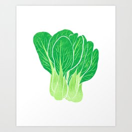 Illustration of Chinese cabbage Art Print