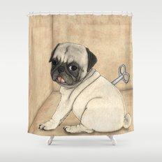 Toy dog; Pug Shower Curtain