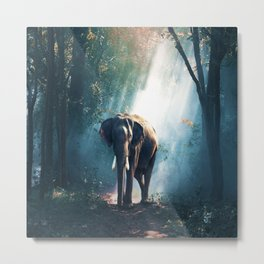 Walking with Elephant Metal Print