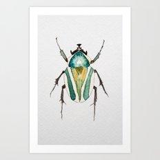 Beetle Watercolor II Art Print