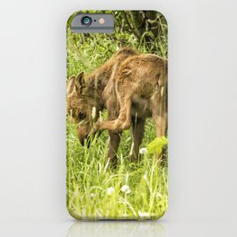 Itchy Nose or Smelly Feet? iPhone Case