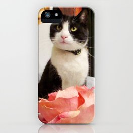 Orazio the charming cat iPhone Case