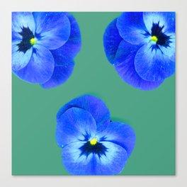 Trio de Viola tricolor Canvas Print