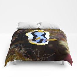 Anna's chromodoris Comforters