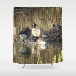 Ducks at John Heinz Wildlife Reguce Shower Curtain