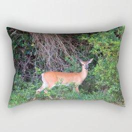 Can I Help You Rectangular Pillow