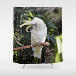 Sulfur-Crested Cockatoo Salutes the Photographer Shower Curtain