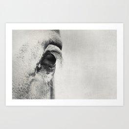 HorSe (V2 grey) Art Print
