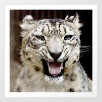 snow leopard Art Prints featuring Snow Leopard by MehrFarbeimLeben