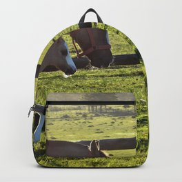 Mom and baby horse Backpack