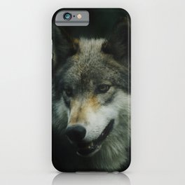 Gray Wolf (Color) iPhone Case