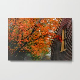 Autumn at the Window Metal Print