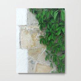 Natural Wall Metal Print