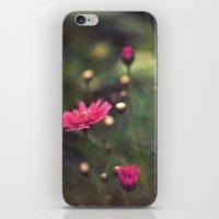 confetti iPhone & iPod Skins featuring confetti by Monica Ortel ❖