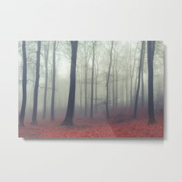 Sound of Fog Metal Print