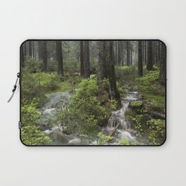 Mountains, forest, water. Laptop Sleeve