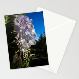 Orchid 1 Stationery Cards
