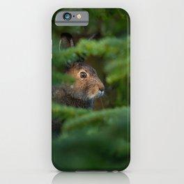 Jackrabbit iPhone Case