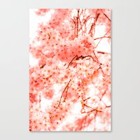cherry blossoms Canvas Prints featuring Cherry Blossoms by 2sweet4words Designs