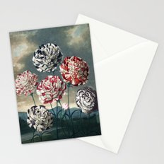 Carnation Botanical Plate from The Temple of Flora Stationery Cards