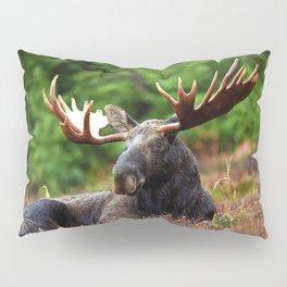 Relax Moose Pillow Sham