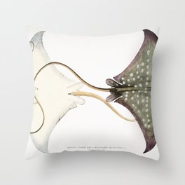 Spotted Eagle Sting Ray (Myliobatis maculatus) from Illustrations of Indian Zoology (1830-1834) by ( Throw Pillow