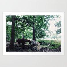 Magic Horses Art Print