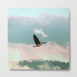 Early Bird Metal Print