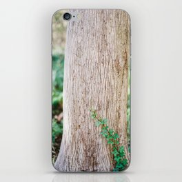 Climbing Vine on a Cypress Tree / Florida Fine Art Film Photography iPhone Skin