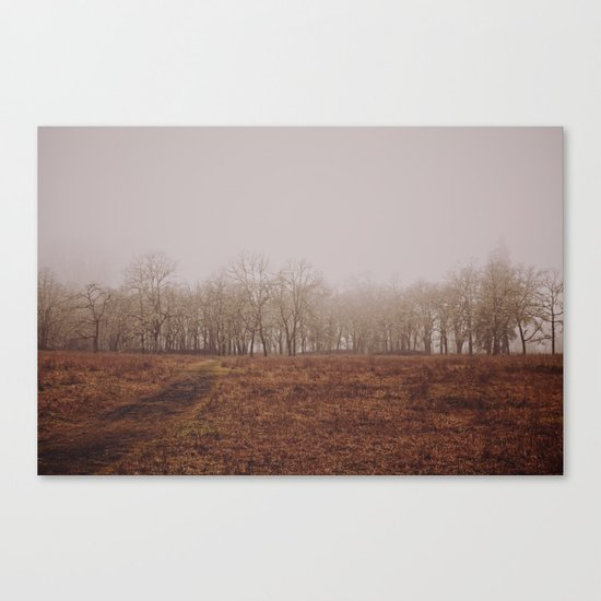 Foggy Trail to the Trees Canvas Print