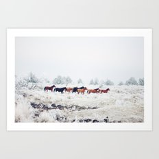 Winter Horse Herd Art Print