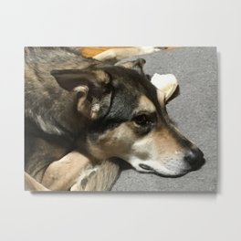 People Let Me Tell You 'Bout My Best Friend Metal Print
