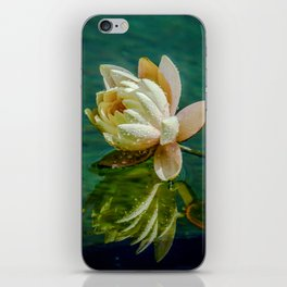 Water Lily after rain iPhone Skin
